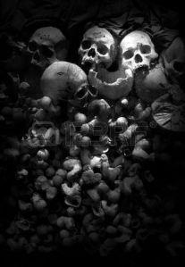 skull6417280-skull